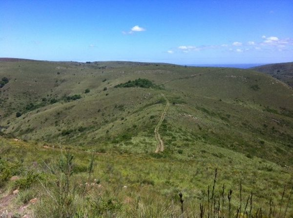 addo_elephant_trail_run4.jpg