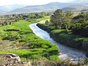 The Great Fish River at Cradock