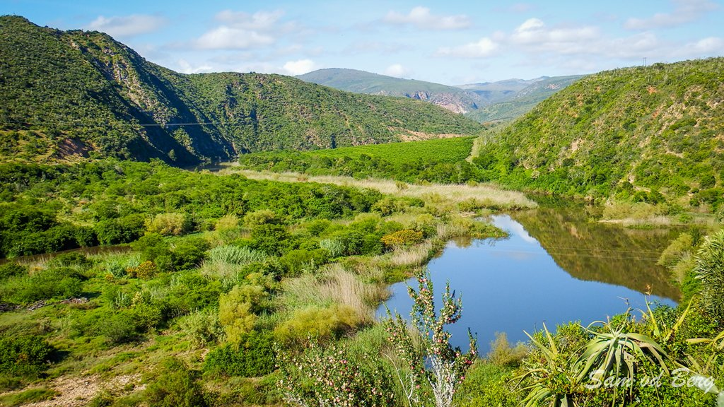 Baviaanskloof and Grootriver Convergence