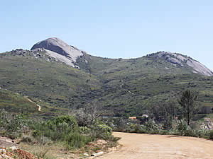 Paarl Rock is a massive granite intrusion at the top of Paarl (Pearl) Mountain, beneath which the town of the same name stands, the largest town in the Cape Winelands.  Find Paarl accommodation on our Paarl accommodation   page.