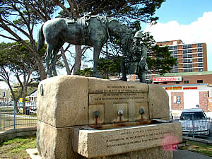 In addition to architecture, Port Elizabeth also offers a number of interesting monuments, one of most poignant being the Horse Memorial which commemmorates all the horses that died (on both sides) during the Anglo-Boer War. Find Port Elizabeth accommodation on our Port Elizabeth accommodation page.