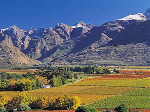 The Breede River Valley, in which the town of Worcester lies, and the neighbouring Hex River Valley are both a scenic wonderland and a region devoted almost exclusively to vineyards.  Find Worcester accommodation on our Worcester accommodation page.