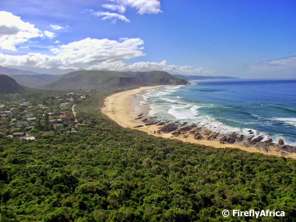 Things To Do In The Crags And Plettenberg Bay