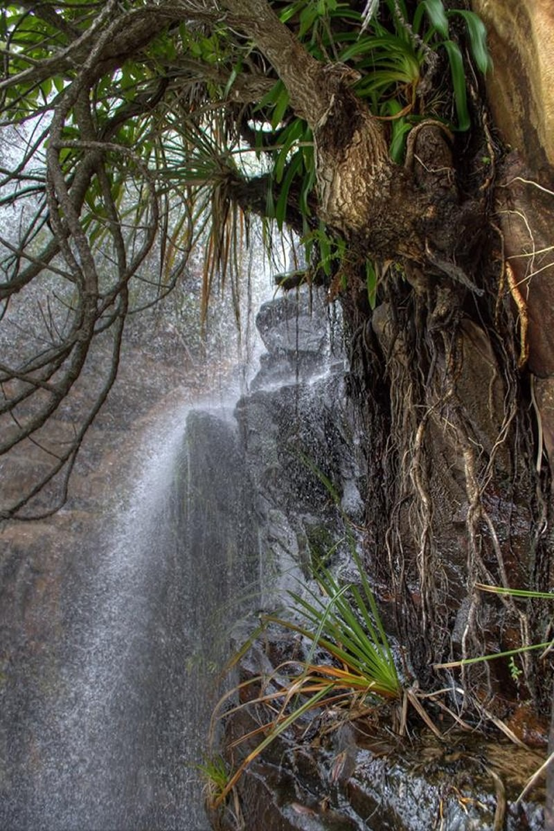 waterfall_hike_innikloof_hankey_22.jpg