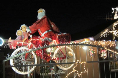 Acacia Street Christmas Lights Graaff-Reinet Tourist Attractions Festivals & Markets
