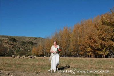Ganora Wedding Venue Graaff-Reinet Function Venues