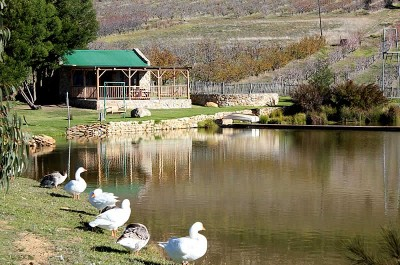 Langdam in Koo Guest Farm Montagu Accommodation
