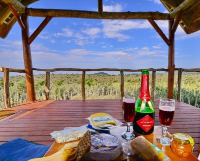 Koffylaagte Game Lodge Wolwefontein Accommodation