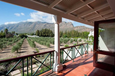 Montagu Vines Guest House Accommodation