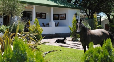 Olive Grove Guest Farm Beaufort West Accommodation