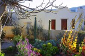 Spekboom Cottages Calitzdorp Accommodation