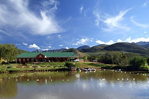 Wilgewandel Holiday Farm Oudtshoorn Accommodation Farm Getaway
