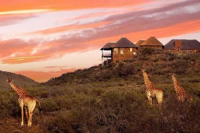 Zandibela Private Game Lodge Willowmore Accommodation