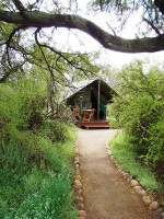 camdeboo_national_park_lakeview_tented_camp_graaff_reinet_01.jpg